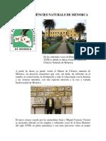 Escrit Web Castellanomuseu Copia