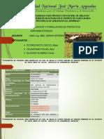 Formulacon y Evaluacion de Proyectos Ppt