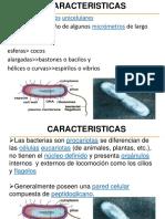 Bacterias Cap 2