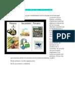 Album de Los Sectores Economicos 2017