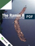Ramin Racket