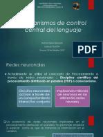 Mecanismos de Control Central Del Lenguaje