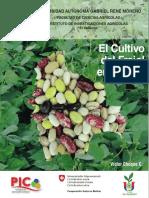 El cultivo del frijol en Bolivia