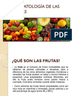 Bromatología de Las Frutas Expo