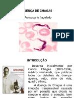 Chagas Slaid