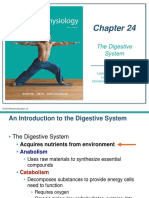 CH 24 Digestive 2017.pptx