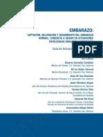 Guía de Actuación Clínica en A.P..pdf