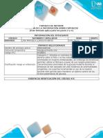 Formato Informe Individual Revision Del Farmaco-und2