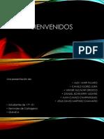 Acidos Nucleicos Presentacion (1)