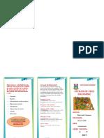 Alimentación-tripticos.docx