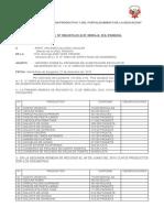 INFORME DE QALI WARMA.docx