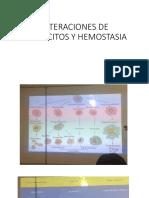Leucocitos y Hemostasia