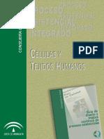 celulas_tejidos