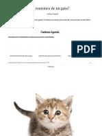 Qué Significa El Ronroneo de Un Gato...