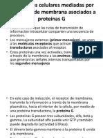 Clase No. 10 - Base Molecular de La Comunicación Intracelular