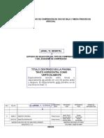 Estudio y Seleccion Del Tipo de Compresor 24-03-2011