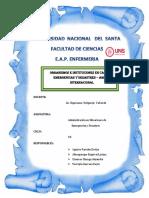 INFORME-DE-ORGANIZACIONES-E-INSTITUCIONES-EN-EMERGENCIAS-Y-DESASTRES-AMBITO-INTERNACIONAL (1).docx
