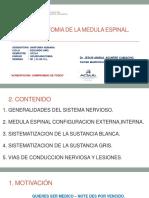 Medula Espinal.pdf
