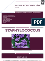 Staphylococcus 1