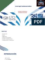 Hemorragia Subaracnoidea Presentacion Ptt