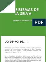 Ecosistema Selva