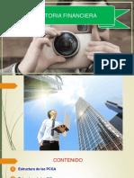 AUDITORIA FINANCIERA - 2017 II - 1.pdf