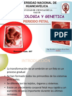 4.PERIODO FETAL.pptx