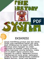 Syst Excretoria