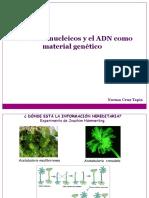 Material Genetico 2º Medio 2017