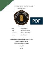 289038509-Laporan-Isolasi-DNA-PDF.pdf