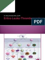 Eritro Leuko Thrombopoesis Blok 14