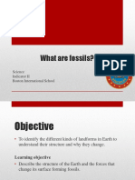 What are fossils? - Science 4 Term