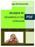 Apuntes Bloq IV