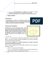 PRE INFORME LAB2 FLUIDOS.docx