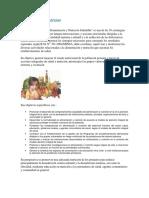 Alimentaciuon y nutricion.docx