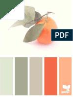 Carta Color Frutos