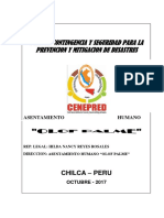 PLAN DE SEGURIDAD OLOF PALME-CHILCA.docx