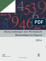 Mocambique Em Numeros Final Net