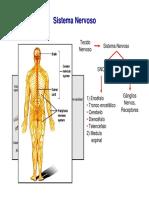 aula3_histologia_tecido-e-sistema-nervoso-2013.pdf