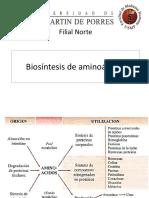 BIOSINTESIS AMINOACIDOS
