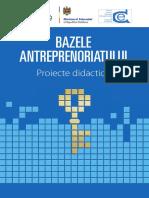 Bazele-antreprenoriatului