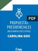 Resumen de programa de gobierno de Goic