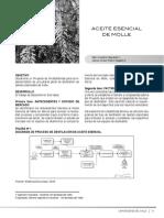 Proyecto Aceite Esencial de Molle