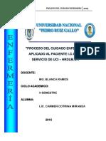 PAE - UCI.docx