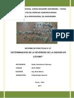 SEVERIDAD-DE-OIDIOSIS.docx