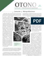 Ecotono_3._Fragmentacion_y_Metapoblacion.pdf