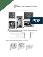 ficha_avaliacao_sumativa_3-Diversidade dos animais – Variedade de formas, revestimento do corpo, regimes alimentares e reprodução.doc