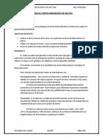 Potencial Hidrocarburifero de Bolivia