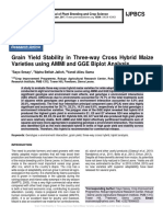 Grain Yield Stability in Three-way Cross Hybrid Maize Varieties using AMMI and GGE Biplot Analysis