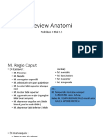Review Anatomi 4